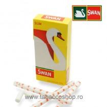 Filtre Swan Slim Precut 102...