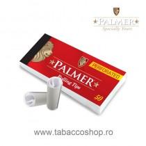 Filtre din carton Palmer...